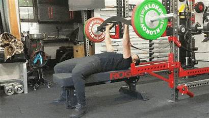 Bench Weight Gym Benches Adjustable India Garage