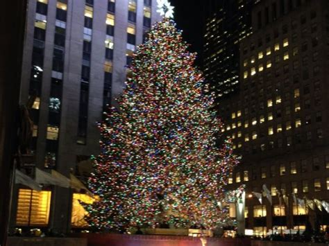 nyc tree lighting 2016 2016 rockefeller center christmas tree from mid hudson
