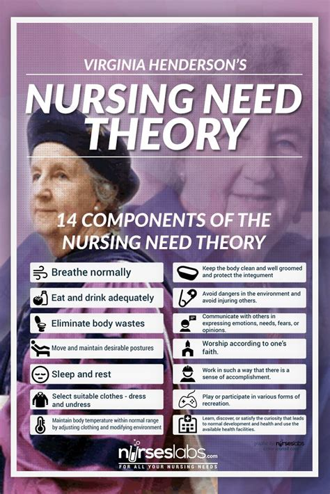 virginia henderson  theory study guide nursing