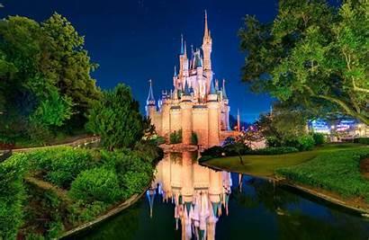 Castle Disneyland Cinderella Orlando Sky Dog Tree