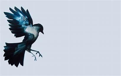 Simple Drawing Raven Bird Birds Digital Illustration