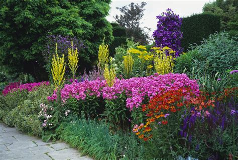 how to design a herbaceous border guide how to create a herbaceous border phs greenleaf