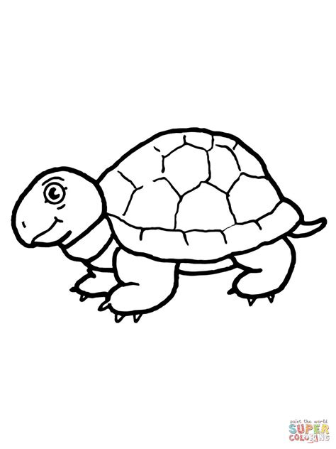 tortoise color tortoise coloring page free printable coloring pages