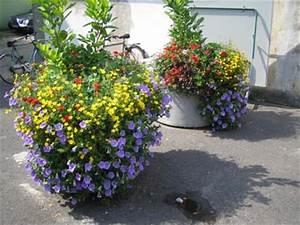 Blumenkübel Bepflanzen Vorschläge : gr nzeugs entwicklung der shopblogger ~ Frokenaadalensverden.com Haus und Dekorationen