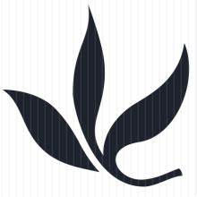 Tea leaf icon from Lyra collection. | Icon Alone