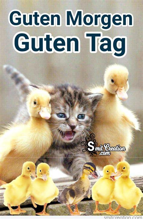 guten morgen bilder guten morgen guten tag bilder mit katzen smitcreation