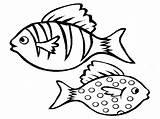 Fish Coloring Pages Aquarium Realistic Drawing Printable Bass Cod Saltwater Boat Getcolorings Tropical Easy Ocean Colorings Realisticcoloringpages Via Mandala Clipartmag sketch template