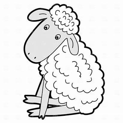 Lamb Sheep Clipart Clip Mary Had Coloring