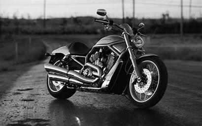 Harley Davidson Motorcycle Wide Motocycle Bike Background