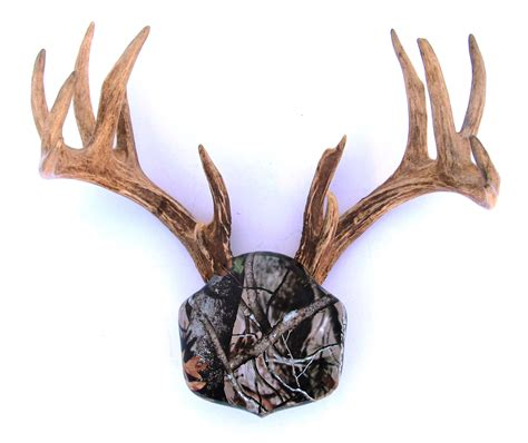 camo  deer stand antler mounting kit