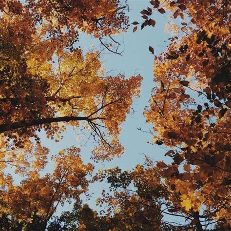 autumn justin lortie vsco grid autumn vsco autumn