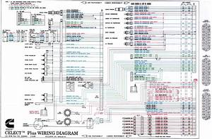 N14 Cummins Ecm Wiring Diagram Download