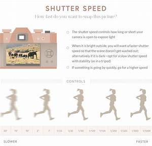 The Beginner U0026 39 S Guide To Photographing In Manual Mode