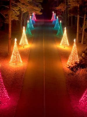callaway gardens lights reviews