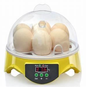 Couveuse Oeuf De Poule : couveuse incubateur 7 oeufs de poule animaloo ~ Premium-room.com Idées de Décoration