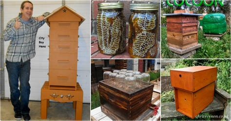 10 Diy Beehives You Can Add To Your Backyard Today Diy
