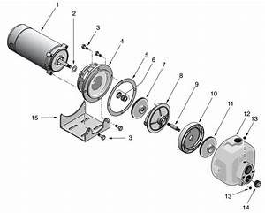 Sta Rite Dmc Series Lawn And Irrigation Pump Parts Diagram