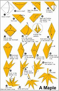 Origami Maple Leaf  With Instructions