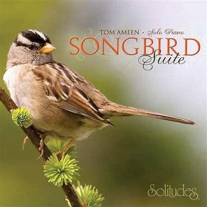Dan Solitudes Suite Gibson Songbird Music Amazon