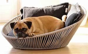 Panier Pour Petit Chien : panier chien ~ Teatrodelosmanantiales.com Idées de Décoration