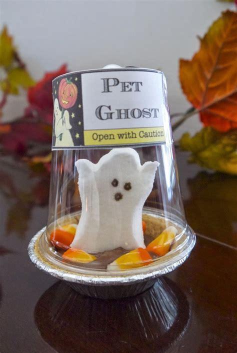 cute diy pet ghost peep pictures   images