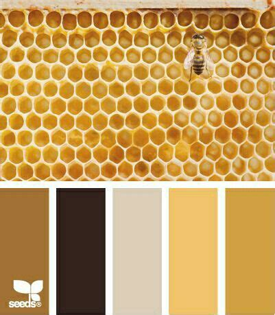 89 best images about save the bees please pinterest honey packaging honey bees and queen