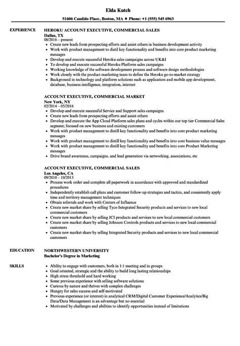 Account Executive, Commercial Resume Samples  Velvet Jobs