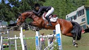 New Zealand win first showjumping Nations Cup event of the ...
