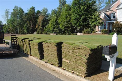 lawn laying cost 2017 bermuda sod prices how much is a pallet of sod