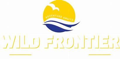 Fishing Frontier Wild Ilfracombe Seals Swim Diving