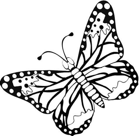 Coloring Butterfly by Free Butterfly Coloring Pages Flying Butterfly