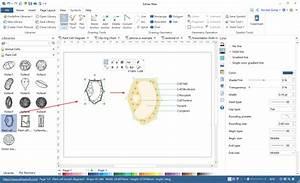 Biology Diagram And Illustration Software