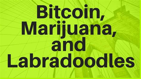 With the growing popularity of bitcoin, many cannabis seed banks have started accepting bitcoin payments. Bitcoin, Marijuana, and Labradoodles - YouTube