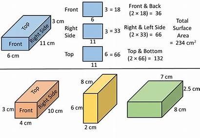 Cuboid Surface Area
