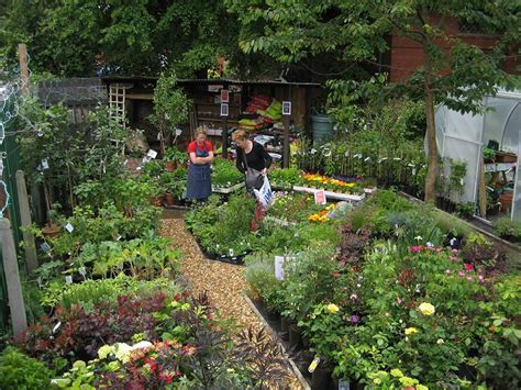 nearest garden nursery garden nurseries me nearest plant nursery nursery