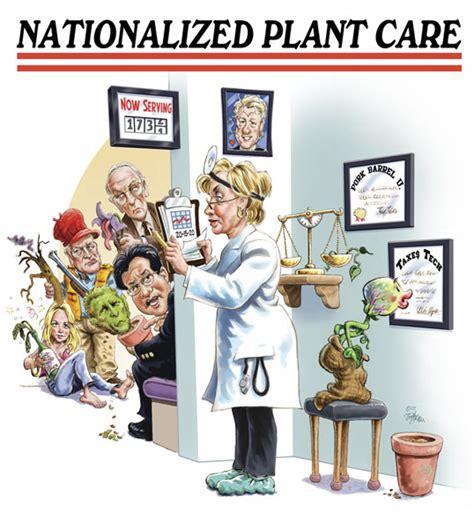 Plant Nursery Catalogs Free by Plant Delights Nursery Spring 2008 Catalog Cover
