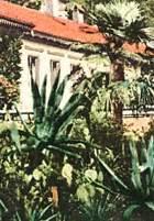 Botanischer Garten Bern Adresse by Sehensw 252 Rdigkeiten In Bern Bekannte Und Historische