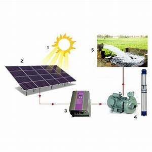 Lider 2 H P Solar Water Pump