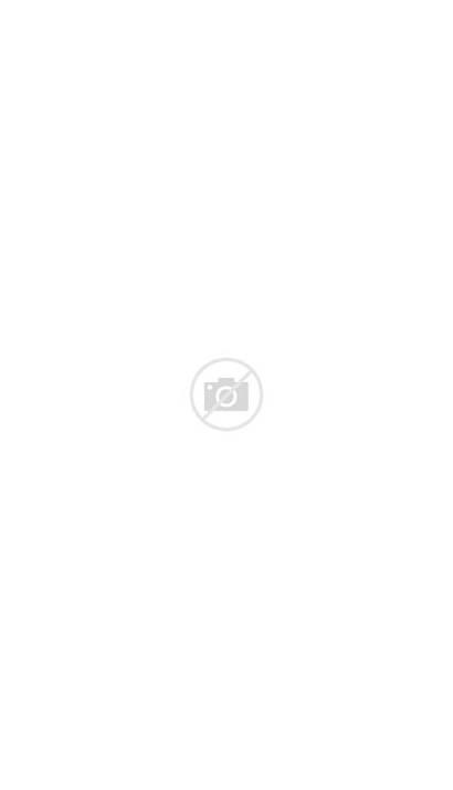 Needle Space Gatlinburg Heraldcourier Towers Twilight Tennessee