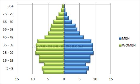 Population Pyramid Excel Exercise