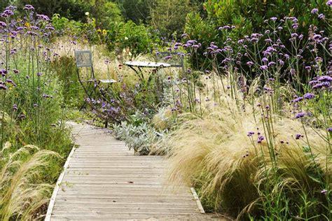 Garten Pflanzen Viel Sonne by Stauden F 252 R Sonne Und Trockenheit Gartentechnik De