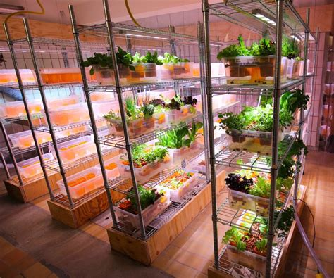 ikea s space10 is creating on site aquaponic farms for