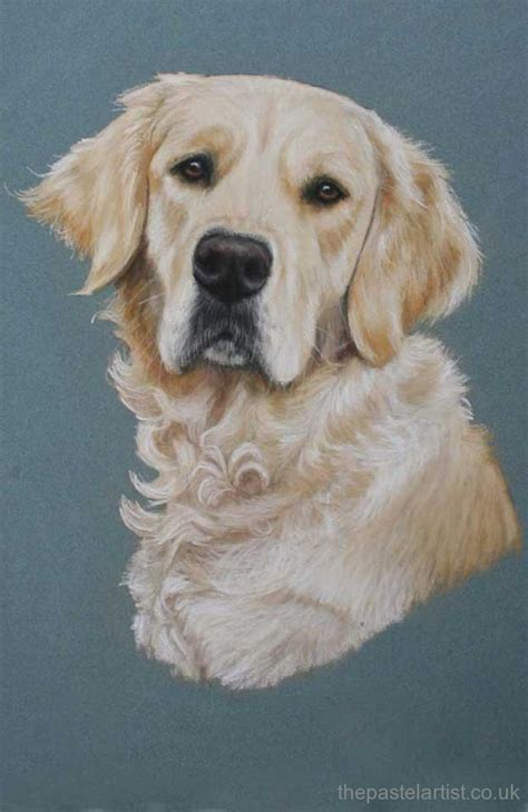 Pastel Dog Portraits By Nina Squire The Pastel Artist
