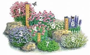 Blumenbeete Zum Nachpflanzen : so gestalten sie insektenfreundliche beete gartengestaltung und ideen pinterest ~ Yasmunasinghe.com Haus und Dekorationen
