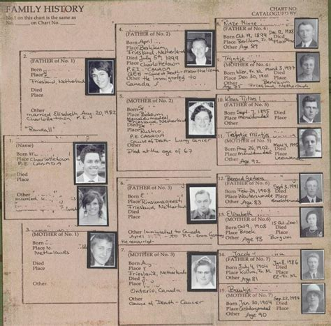 Life Stories  Family History Paper  Scrapbook Your