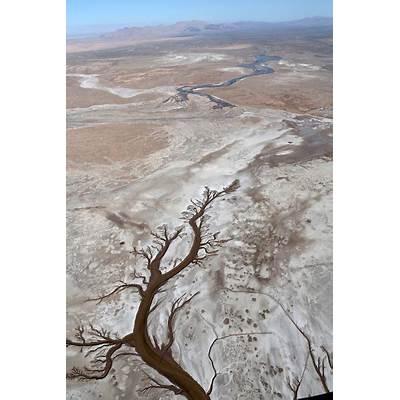 A progress report on the Colorado River pulse — High