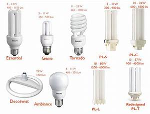 Jual Lampu Philips 14w Essensial Putih   Cool Daylight   Plc