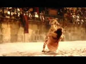Animal Gladiators - - YouTube