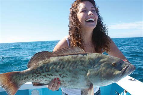 grouper gulf season gag underway
