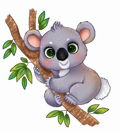 Koala Clip Clipart Transparent Cliparts Animated Bear
